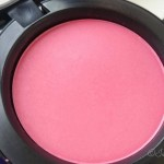 MAC Pro Longwear blush in Whole Lotta Love