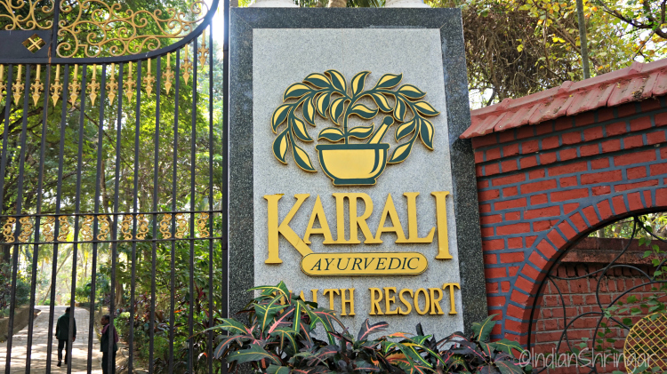 Kairali Ayurvedic Healing Village review