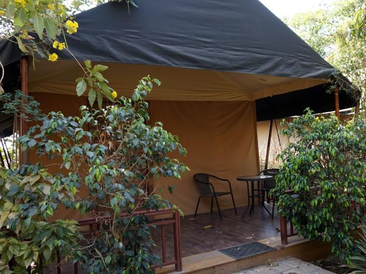 Fern Tent at the Fern Gir Forest Resort